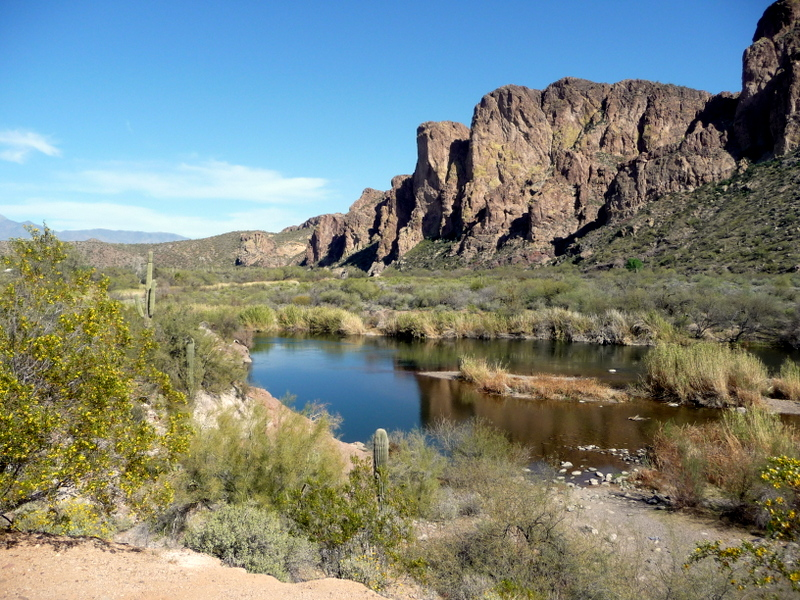 Saguaro lake live laugh rv for Saguaro lake az fishing