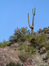 SuperstitionMtn 073