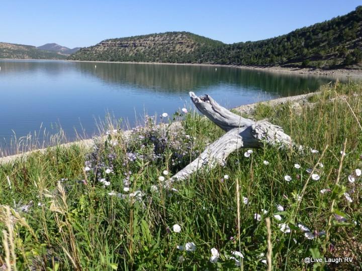 Ridgway Lake