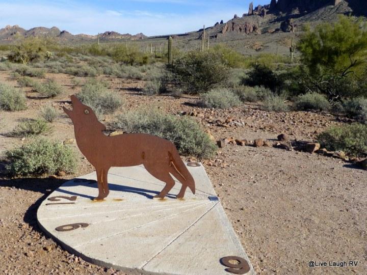 Camping near Phoenix