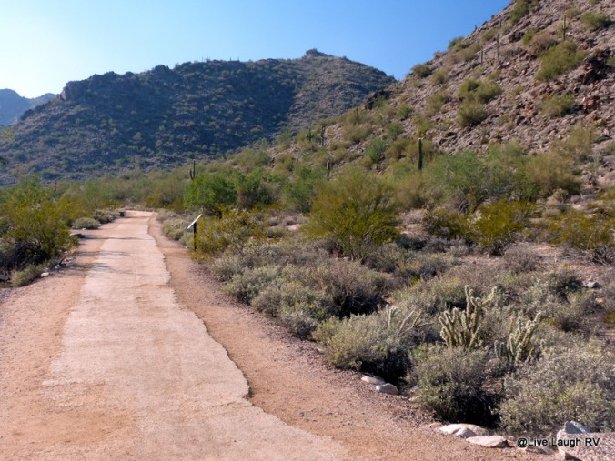 RVing in Arizona