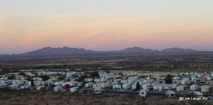 SKP Saguaro