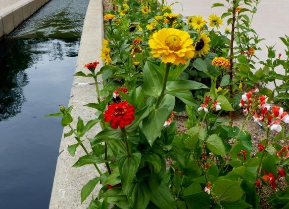 gardening and art in Denver Colorado