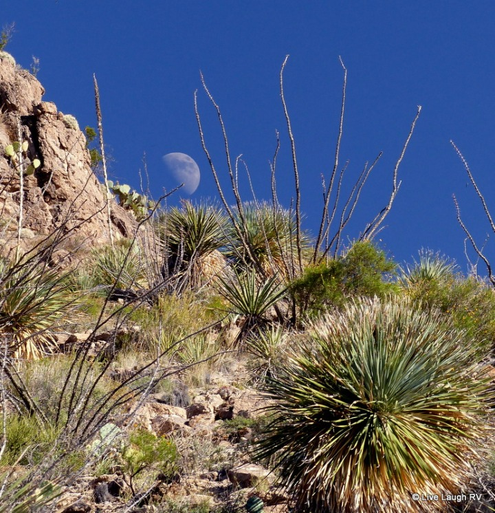 New Mexico State Parks