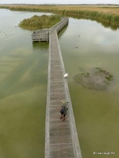 birding center Port Aransas