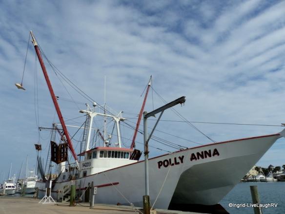 Polly Anna