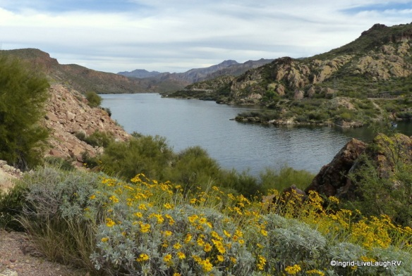 Canyon Lake AZ