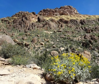 Superstition Wilderness Area