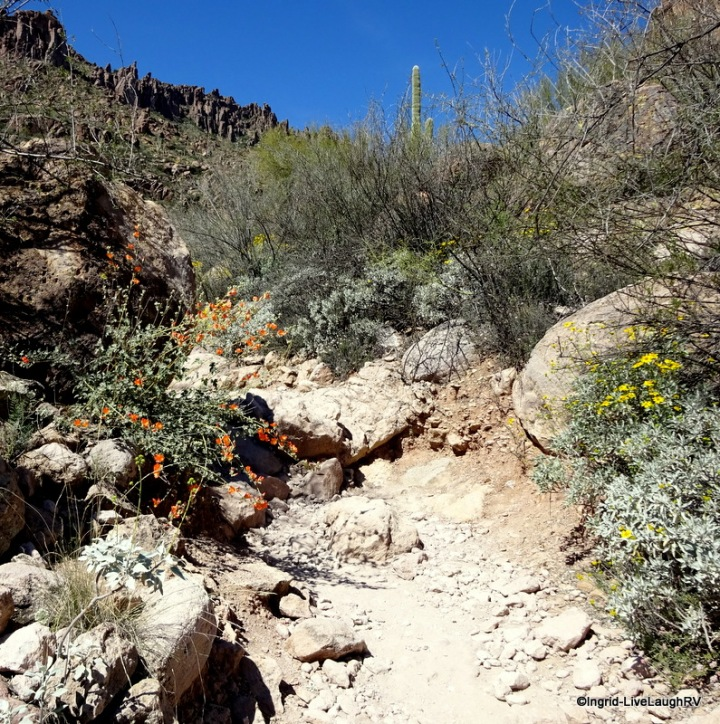 Peralta Trail Superstitions
