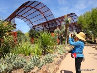 Phoenix Desert Botancial Garden