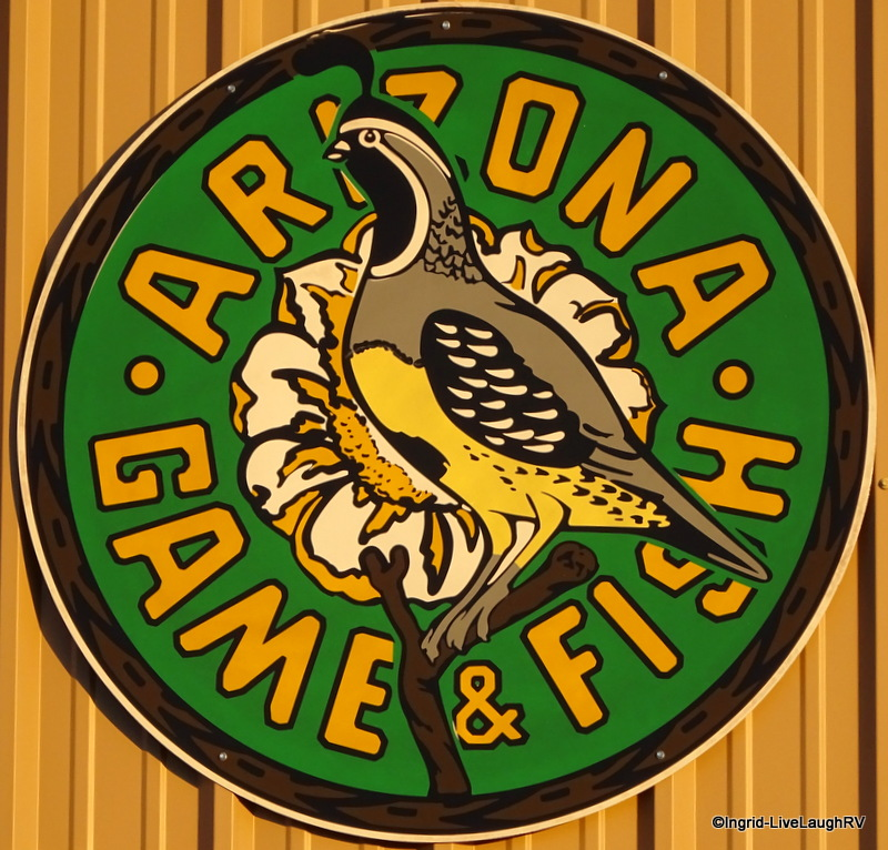 Maricopa county live laugh rv for Az game fish