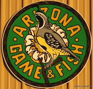 Arizona fish and game live laugh rv for Az game and fish