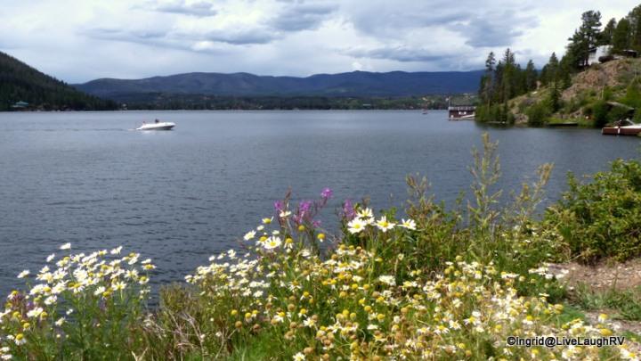 Grand Lake, Colorado, wildflowers along the shores of a mountain lake, #picturesqueColorado, #mountainLakes