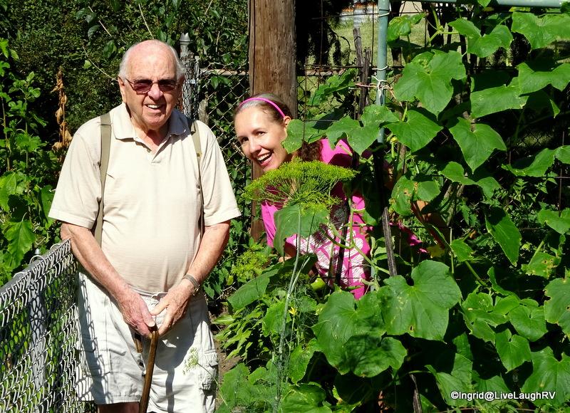gardening in Illinois