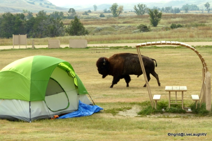 camping in the Badlands