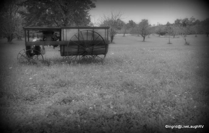 Door County Orchards