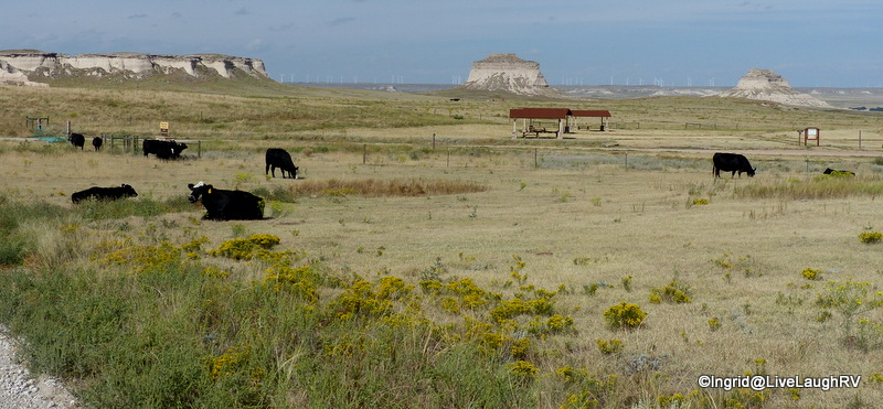 Picnic area and trailhead to Pawnee Buttes.