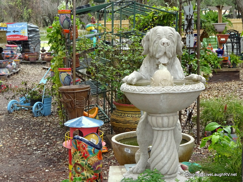 Visiting the local Garden and Feed store had me longing for a home with a yard. That feeling was quickly passed though :-)