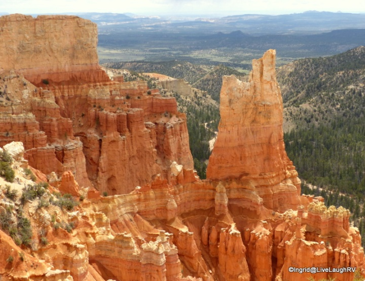 Bryce loves me back. Can you see the rock heart in the center of the photo?
