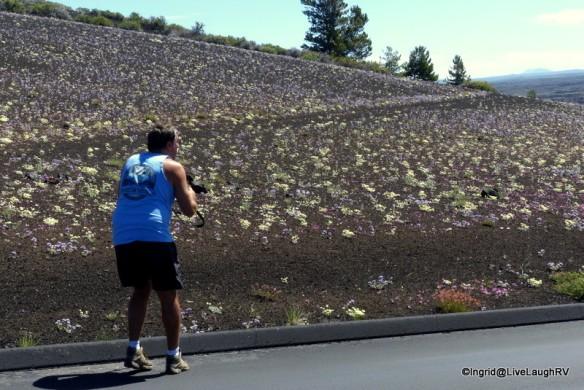 Dave stalking wildflowers!
