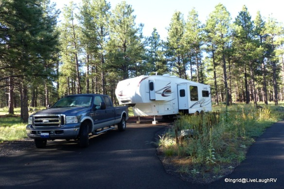 Our peaceful campsite at Lake Kaibab National Forest Campground