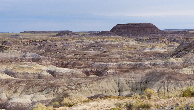 """From the north entrance, we travel through an area called. """"Painted Desert""""."""