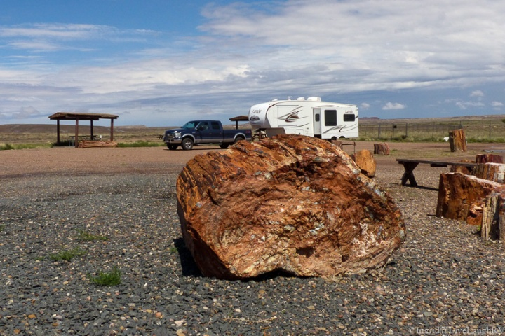 RVing at the Petrified National Park