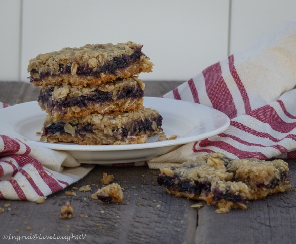 Blueberry Oatmeal Squares Bars