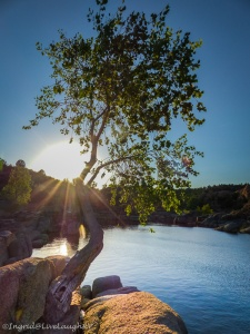 sunshine in Prescott Arizona
