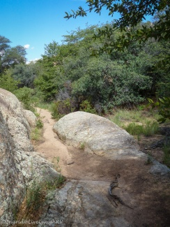 hiking in Prescott, Arizona