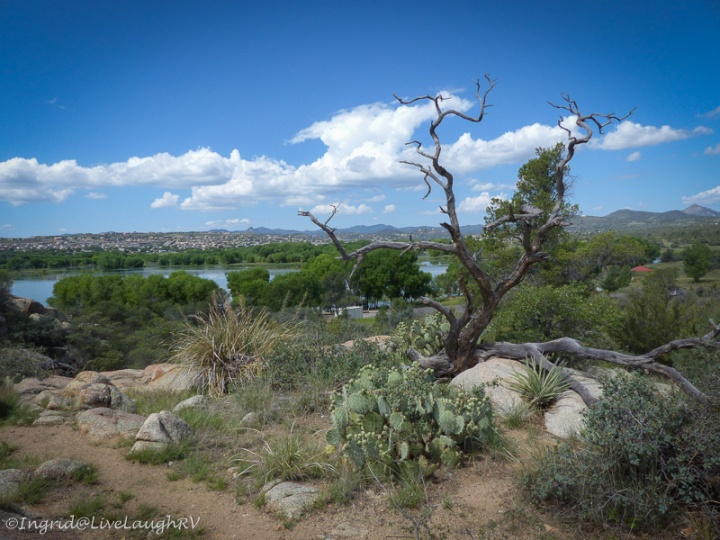 Willow Lake Prescott Arizona
