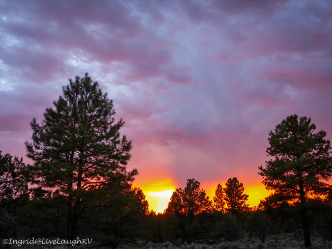 sunset at Kaibab National Forest