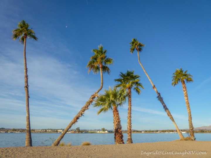 Rotary Park Lake Havasu City Arizona