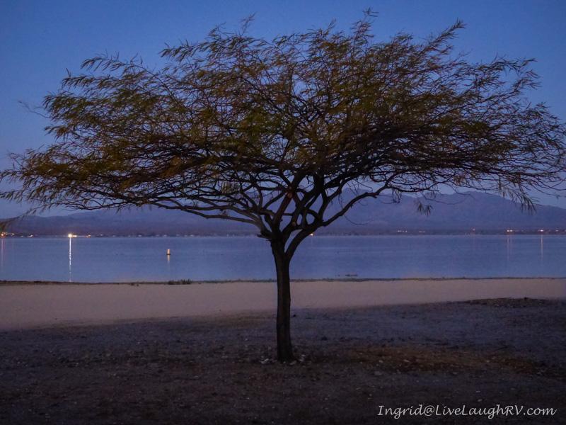 sunrise Lake Havasu