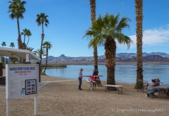 model airplane club Lake Havasu