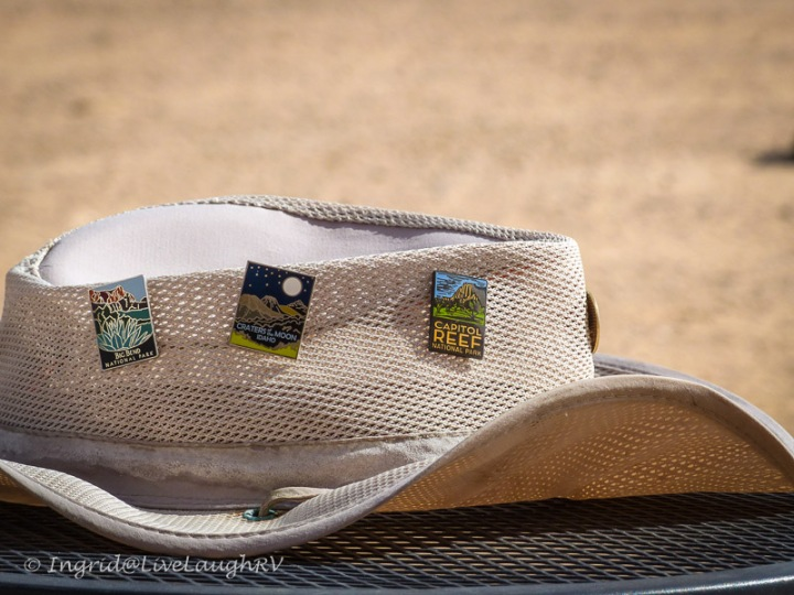 National Park Pins