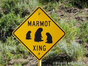 Crested Butte Colorado