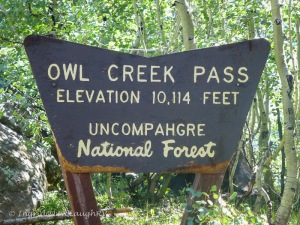 Owl Creek Pass Ridgway Colorado