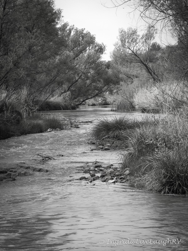 Black and White photography of Verde River near Cottonwood Arizona