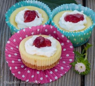 easy cheesecake cupcakes recipe