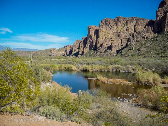 Salt River Arizona