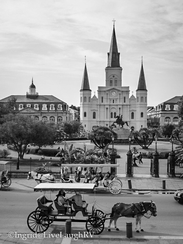 St. Louis Cathedral New Orleans Louisiana