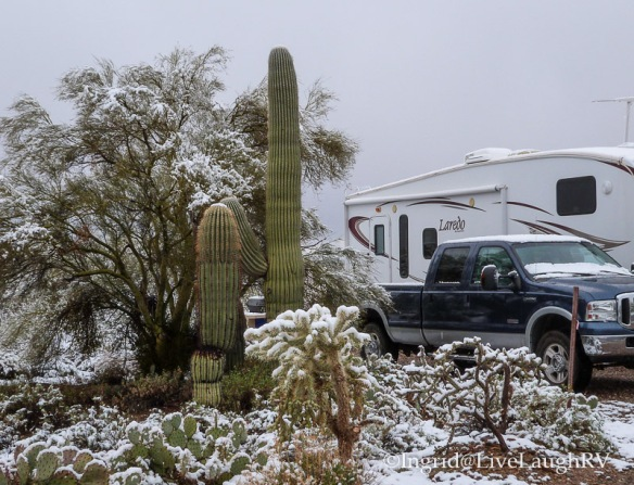 snow in Tucson Arizona