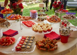 The dessert table - my cupcakes were a big hit!