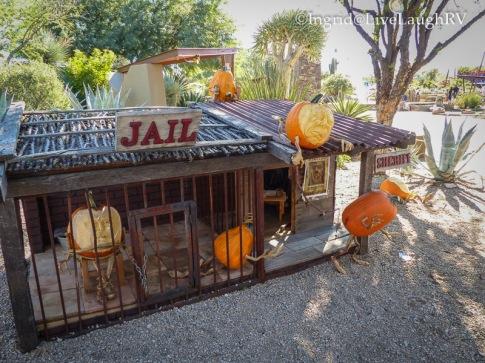 Carefree Pumpkins