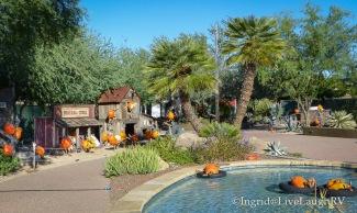 pumpkin patch Phoenix Arizona