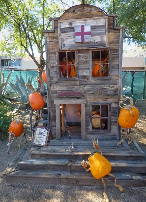 stem enhancement for pumpkins