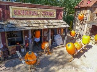 Enchanted Pumpkin Garden Carefree, AZ