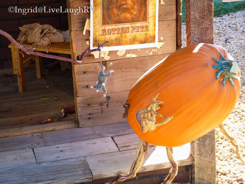 pumpkins in Carefree Arizona