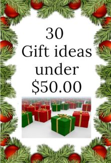 30 gift ideas under fifty dollars